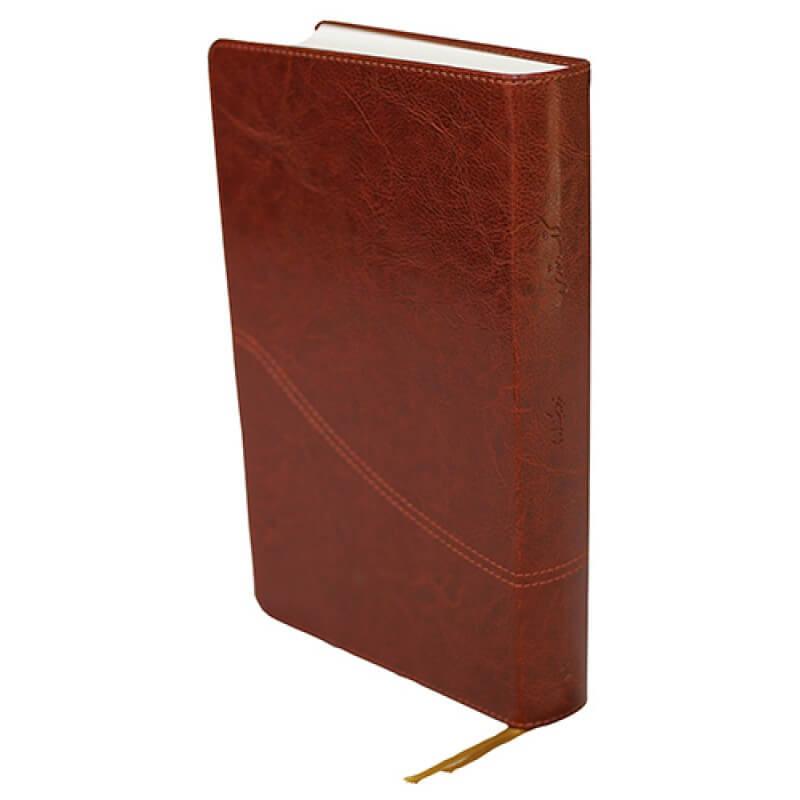 Bibelen på persisk (farsi)