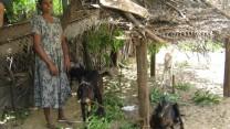Ny præsident i Sri Lanka kan mindske forfølgelsen af kristne