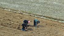Nordkoreanske kristne mindes nødssituationer før covid-19: Vi kan ikke undgå at blive dybt berørt af vores himmelske fars godhed, nåde og kærlighed