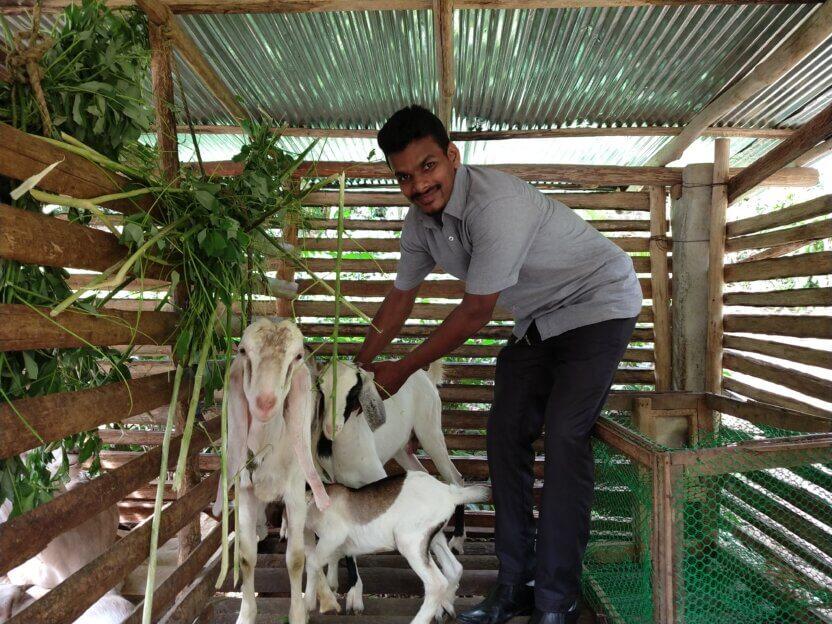 Præst på Sri Lanka får hjælp til selvhjælp i form af en ged